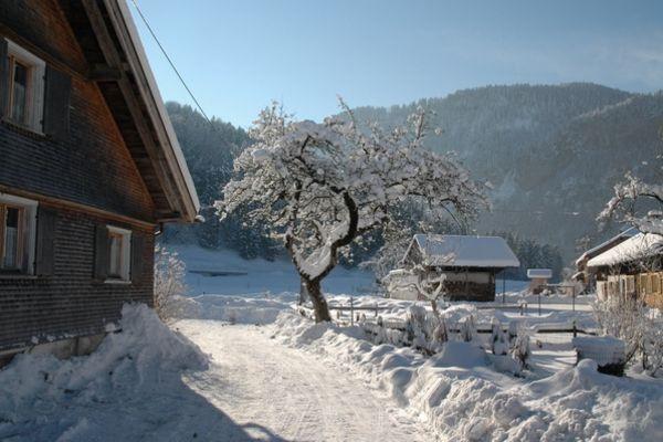 Bilder Skihütte